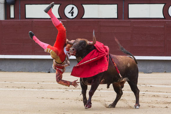 A goring during a bullfight in Madrid