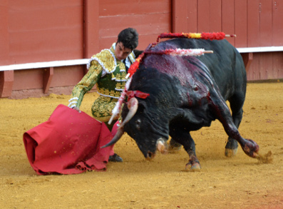 Myths about bullfighting