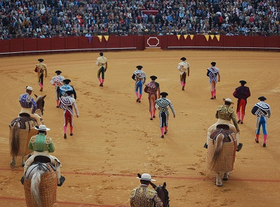 What is is bullfighting