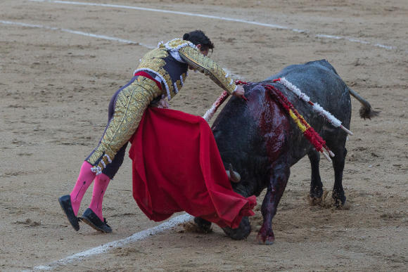 Matador Diego Urdiales killing a bull in Madrid